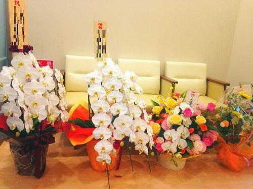 開院祝いの花選び方